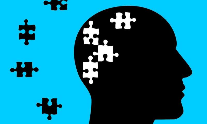 Mental Health Policy And Outcomes:        A State by State Comparison